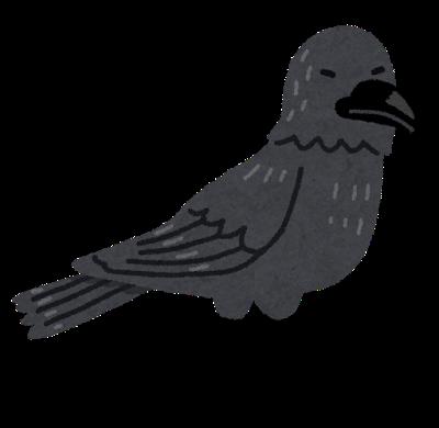 bird_karasu