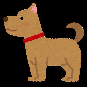 animal_dog_side