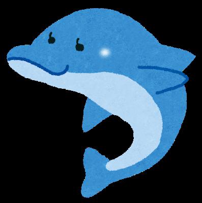 animal_dolphin