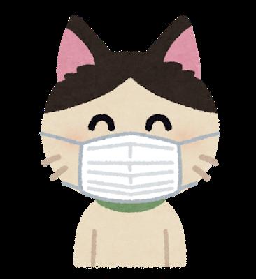 cat_mask