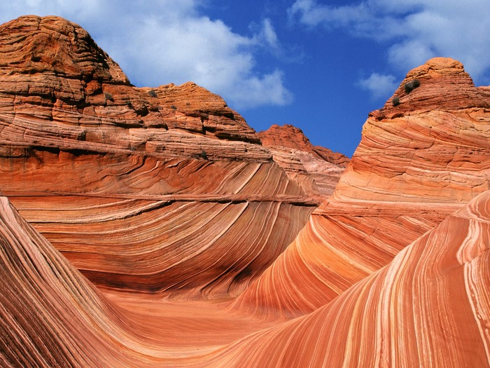 The_Wave_Paria_Canyon_Vermilion_Cliffs_Wilderness_Area_Arizona