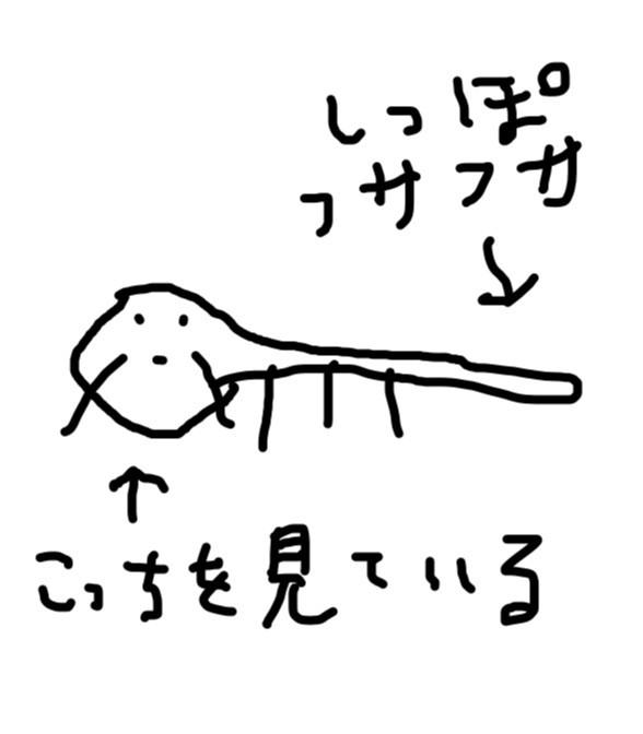 tanu1