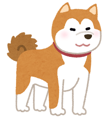 dog_akitainu