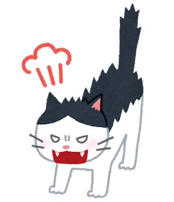 cat_angry