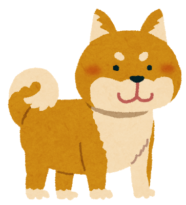 shibainu_brown