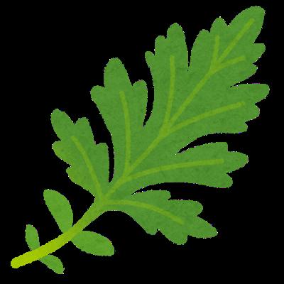 vegetable_yomogi