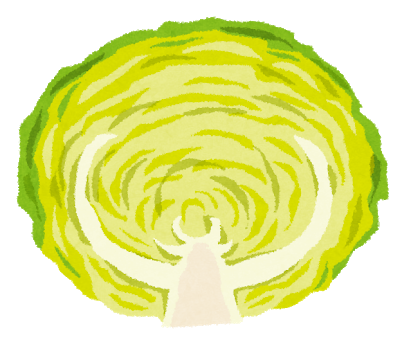 cut_vegetable_cabbage