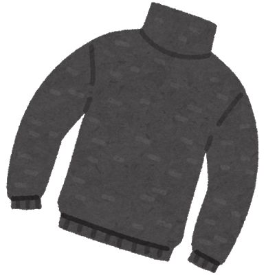 fashion_sweater_turtle