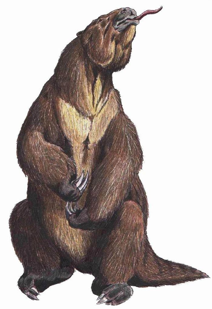 実在した巨大生物・古代のナマケモノの再現図