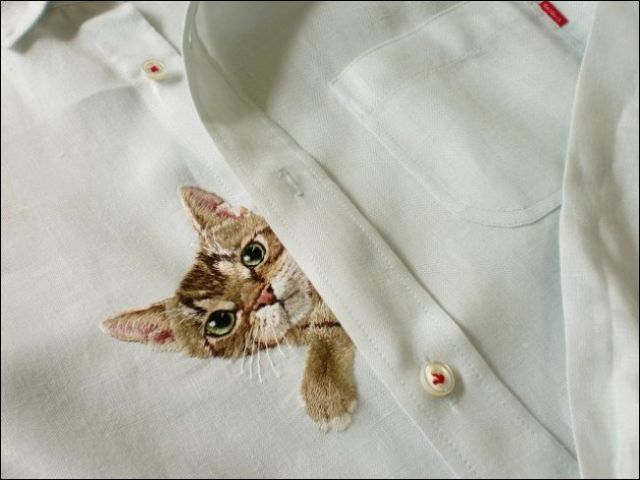 cat06