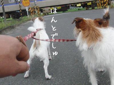 hana&azu01