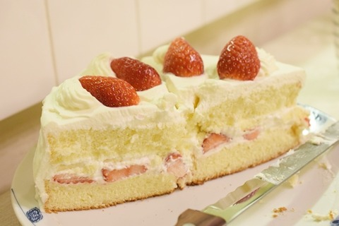 クリスマスケーキ (3)