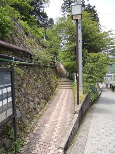 駅からはこの道