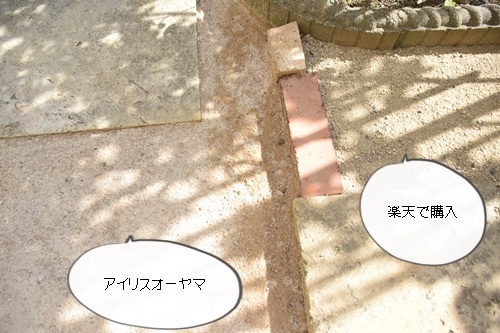 cc9e5600.jpg