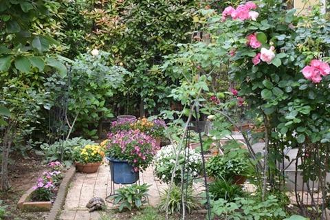 うっそうとした庭2