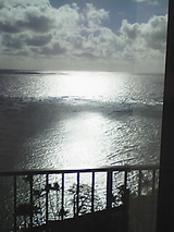 パークホテルの窓から