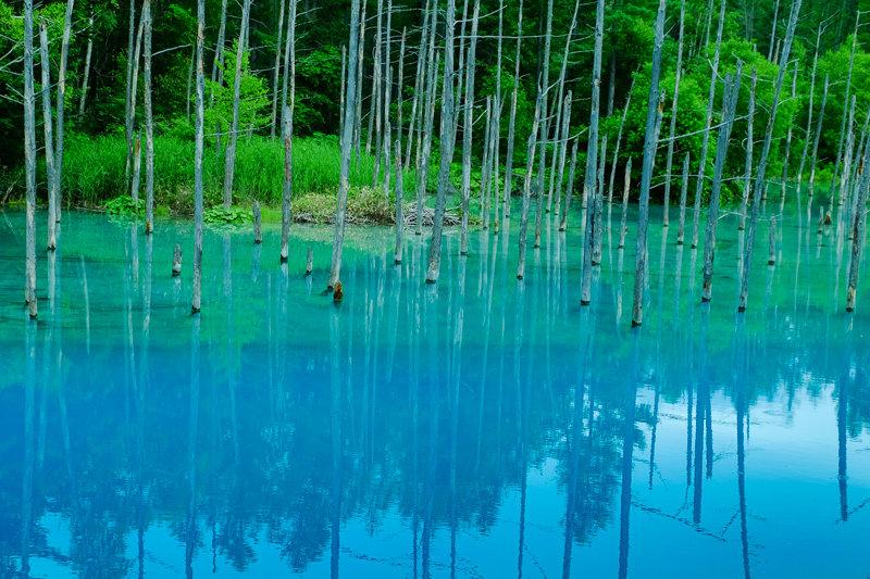 20170720_青い池_6