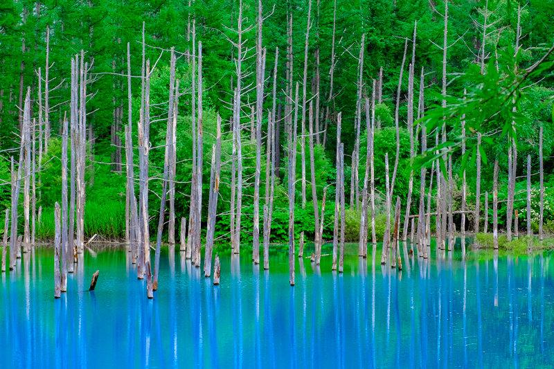 20170720_青い池_1