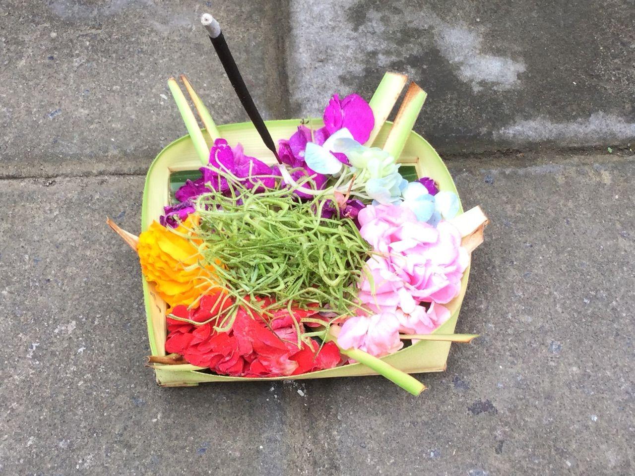 http://livedoor.blogimg.jp/hana8778hana/imgs/a/3/a3b8e77f.jpg