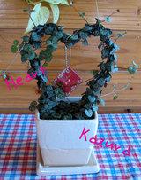 heart kazura