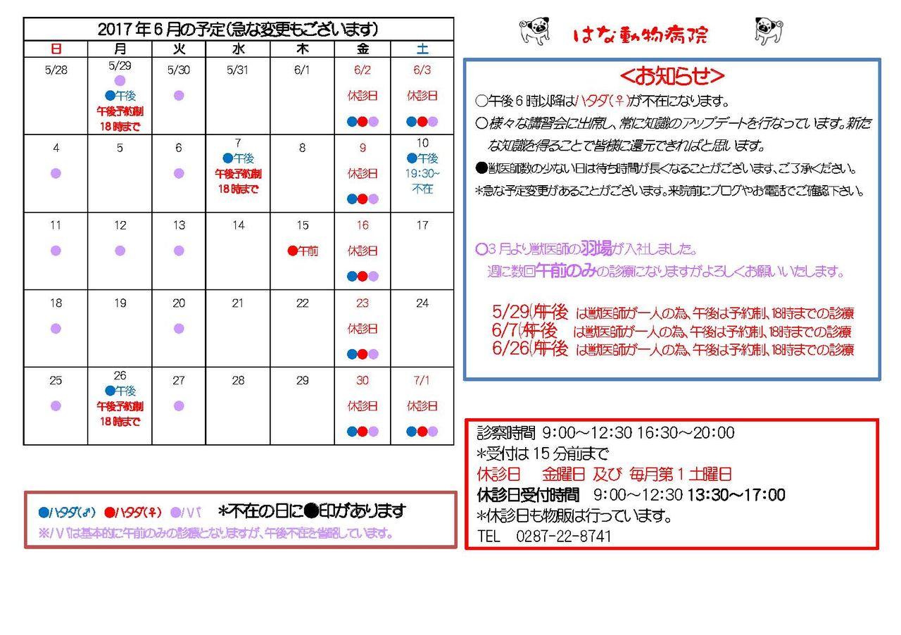 2017年6月の予定(A4)