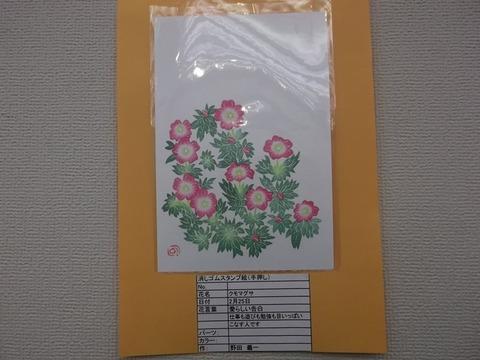 DSCF5539