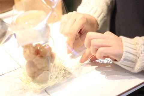 *seed bottle* 明日5月15日の東京蚤の市にて販売いたします