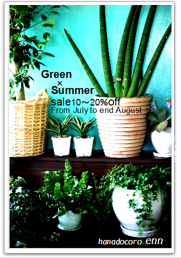 Green×Summer×Sale!