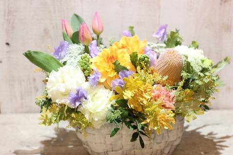 春を纏う花の香り