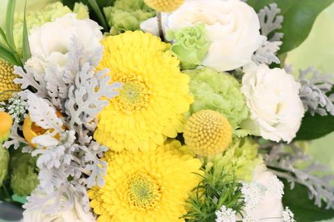 送別会シーズン!お花も沢山入荷してきてます!