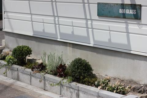 花壇の植え込み♫@808GLASSさん