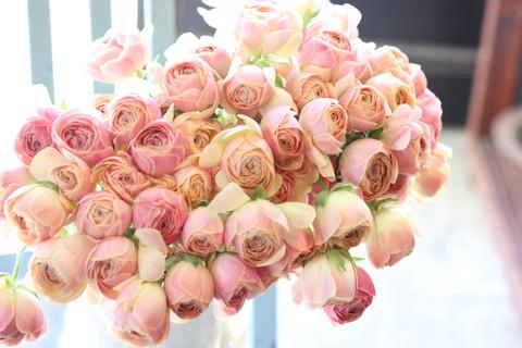 * spring flowers *