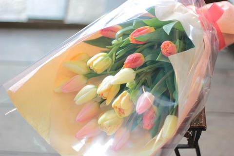 春のお花 チューリップ♪