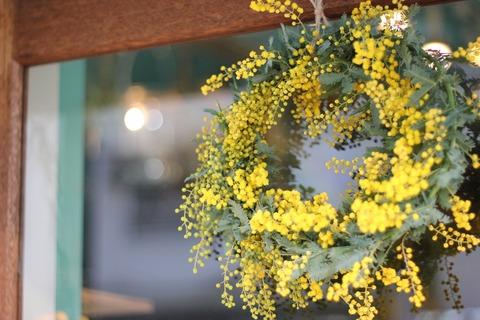 *mimosa wreath*