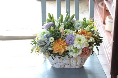 * ダリアと春の花畑 *