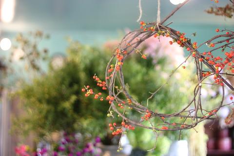 ~autumn lease~