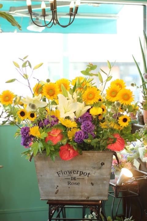 お祝いのお花♪オープン 直売所「メビウスハウス」さんへ