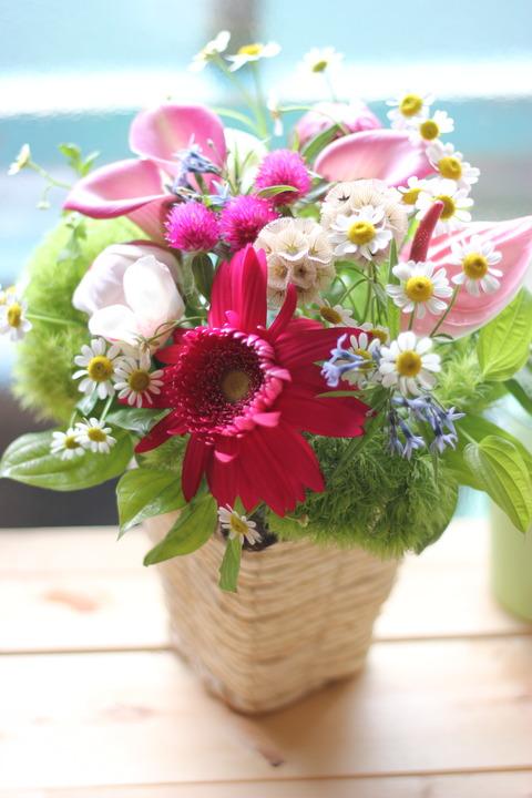 ハナドコロエン*お花のレッスン