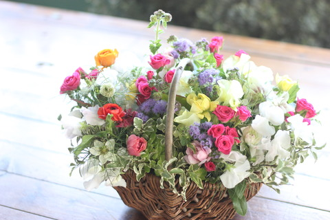 * colorful arrangement *