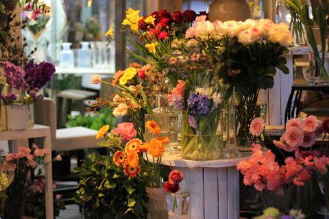 * 春のお花いっぱい *