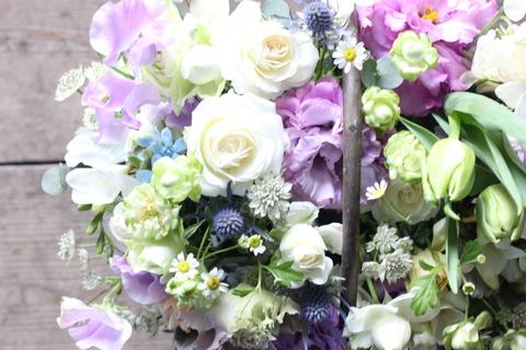 白と紫に春を感じる