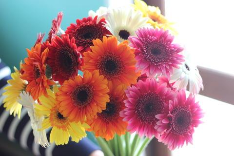 *色鮮やかなお花*