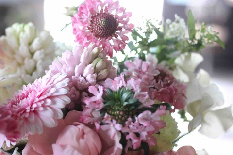 春色ピンクで旅立ちのお祝い
