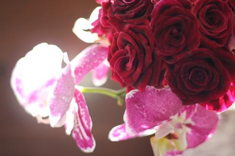 小りんのバラ ブラックビューティと胡蝶蘭のコンパクトなクラッチブーケ♪