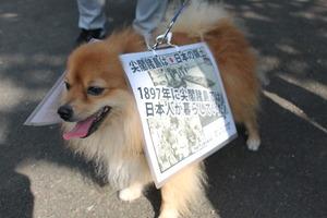 yuuki-4