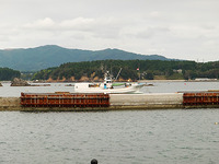世話人さん漁船