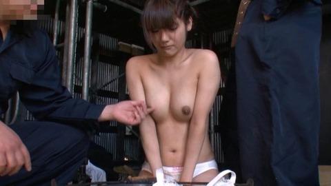 調教 家畜露出 みづなれい svdvd-214 (5)