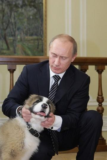 putin-dog-buffy-2