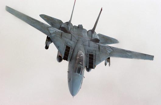 US_Navy_F-14D_Tomcat_%282268467788%29