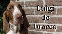 b_luigidebracco